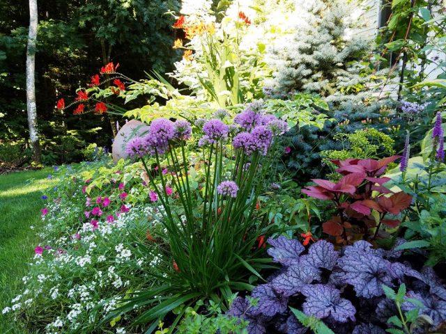 Popular Garden Tools